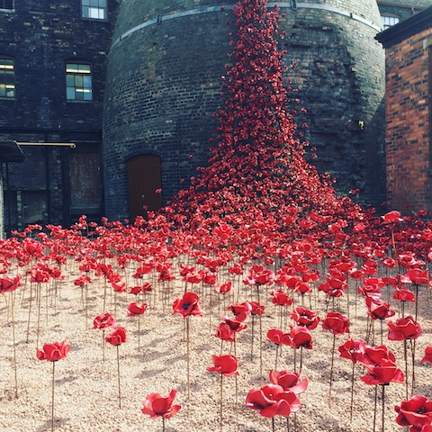 poppies-middleport-pottery