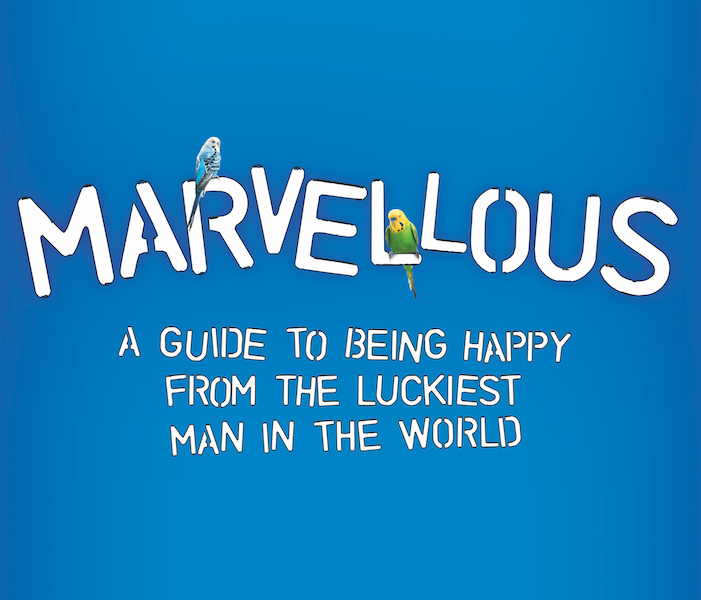 Marvellous-play-image